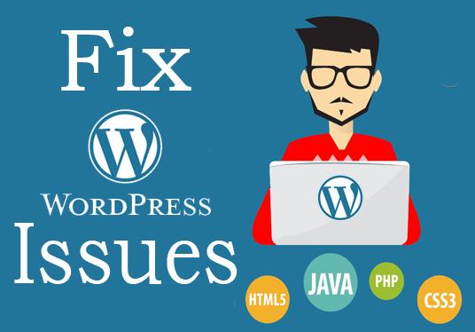 A Guide to Fix WordPress Common Errors